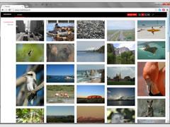 Portfolio sites